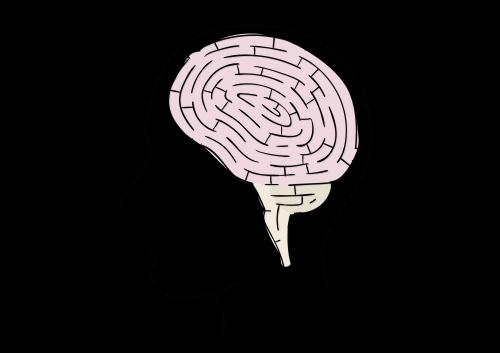 Hersenen - Doolhof-1