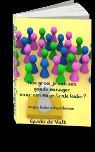 E-boek: van een manager naar een magistrale leider